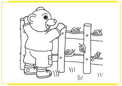 Petit Ours Brun et les escargots